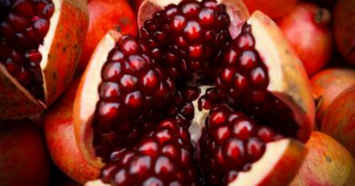 """rich results on google's SERP when searching for """"Pomegranate fruit nutrition"""""""