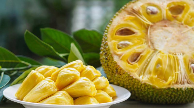 "rich results on google's SERP when searching for ""Jack fruit nutrients"""