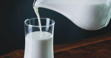 "rich results on google's SERP when serching ""fresh milk"""